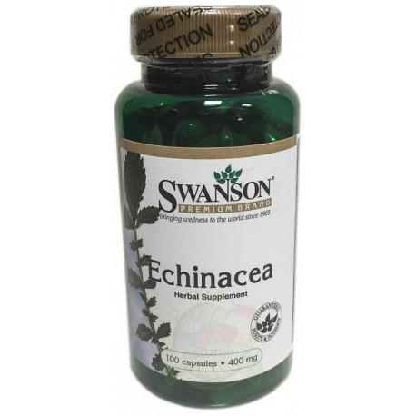 Echinacea 400mg 100 kapsułek Jeżówka SWANSON
