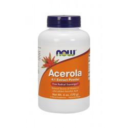 Acerola Ekstrakt 4:1 Proszek 170g Witamina C Now Foods