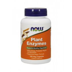 Plant Enzymes Roślinne Enzymy Trawienne (120kaps) Now Foods