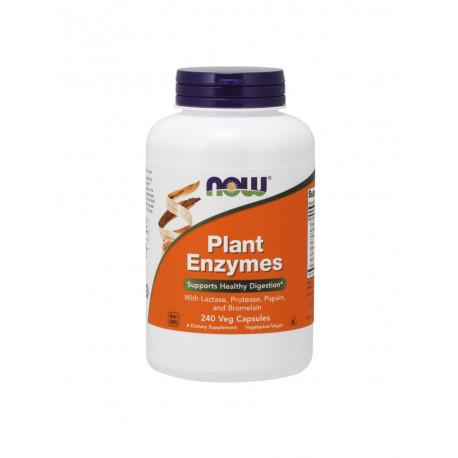 Plant Enzymes Roślinne Enzymy Trawienne (240kaps) Now Foods