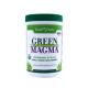 Green Magma BIO 300 g Sok z Młodego Jęczmienia Green Foods