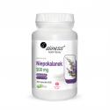 Niepokalanek 500 mg Wspiera gospodarkę hormonalną Kobiet (100 kaps) Aliness