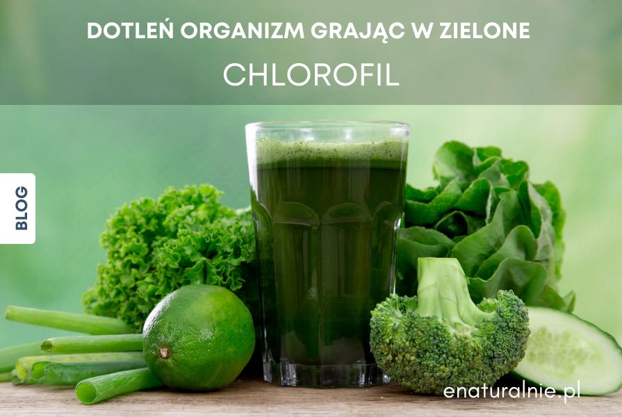Chlorofil - Dotleń organizm grając w zielone