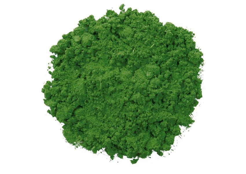 Chlorella – działanie, dawkowanie i właściwości